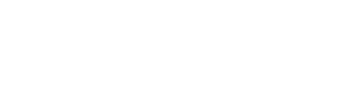 PDL International